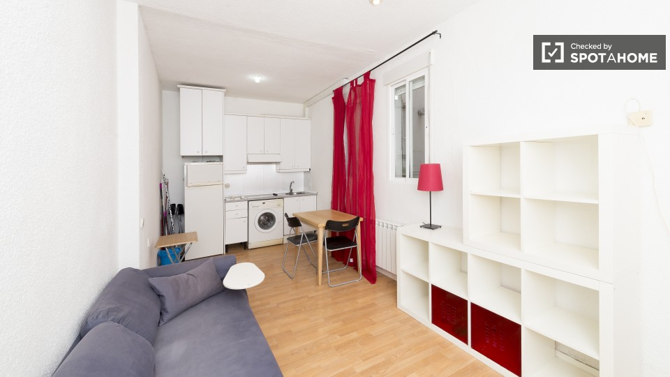 apartamento-en-alquiler-en-calle-san-ildefonso-madrid