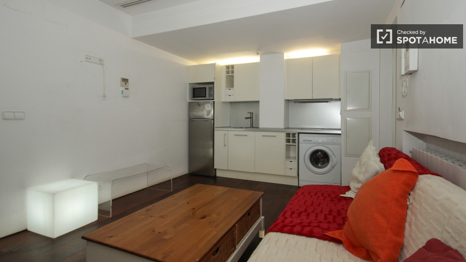 spotahome affordable 1 bedroom luxury apartment with