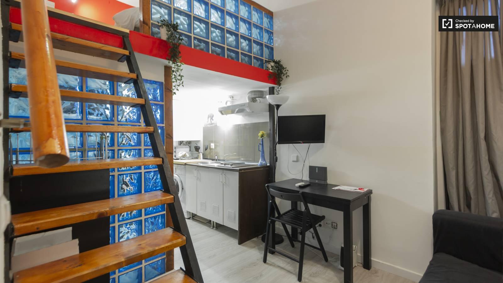 Cozy studio apartment for rent in lavapiés madrid ref 277574 spotahome