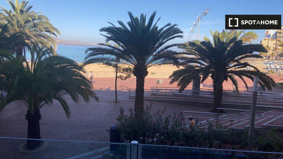 Estudio en Las Palmas de Gran Canaria