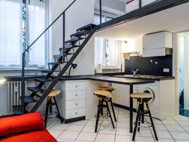 Spacious studio apartment for rent in Washington, Milan