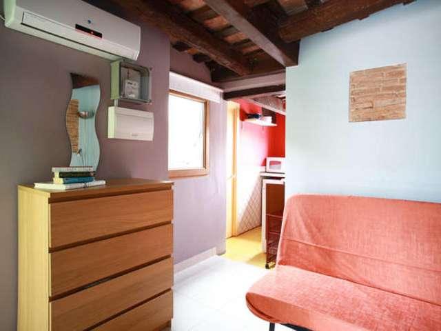 Lovely 1-bedroom apartment for rent, Barri Gòtic, Barcelona