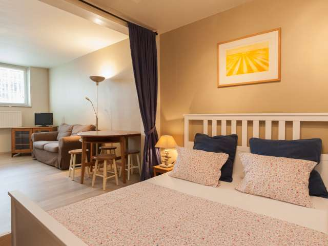 Modern Furnished Studio Apartment with Utilities in Brussels