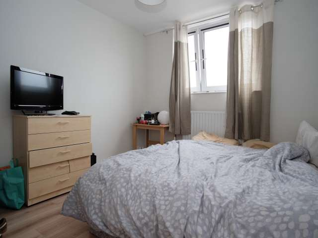Light room in 3-bedroom flat in Belgravia, London