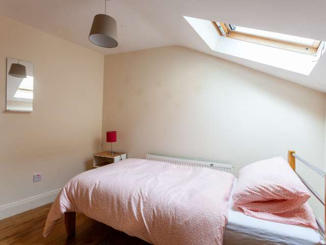 Comfortable room to rent, 12-bedroom house, Downtown, Dublin