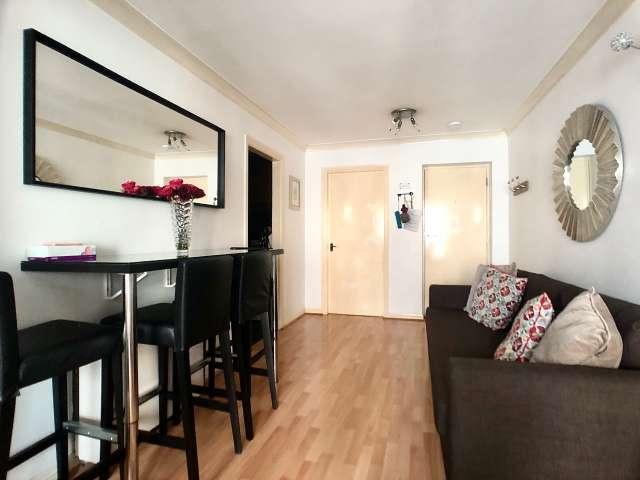 Elegante appartamento con 1 camera da letto in affitto a Broadstone, Dublino
