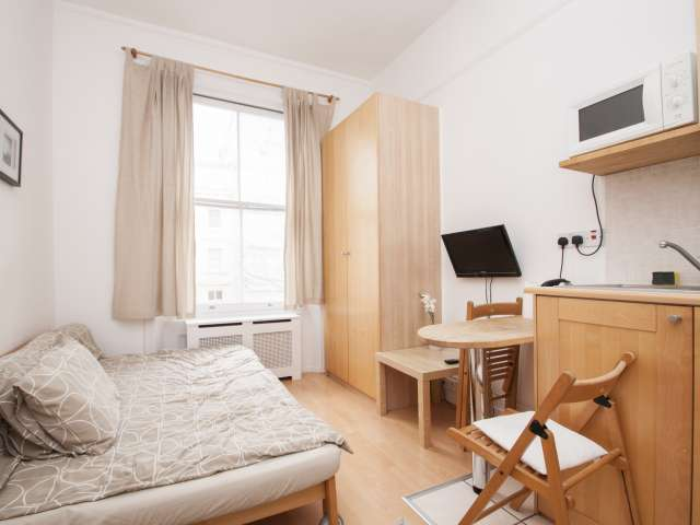 Centrally Located Studio for Rent in London