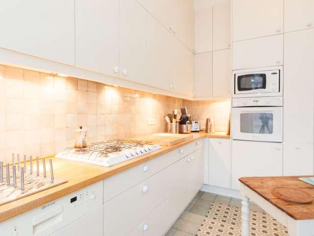 Big room in apartment in Schaerbeek, Brussels