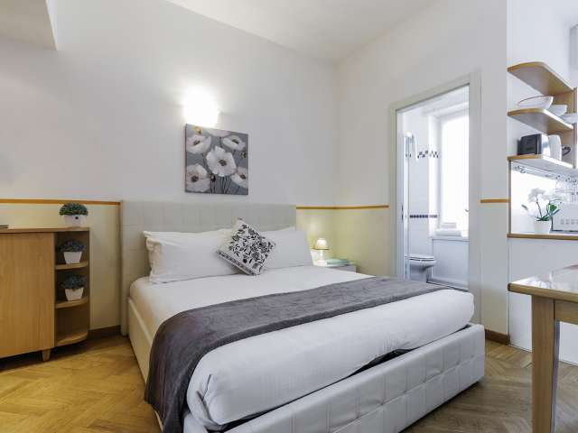 Cosy studio apartment for rent in Milan Centro
