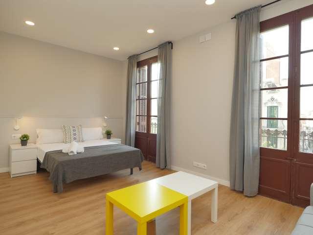 Stylish studio for rent in Sants, Barcelona