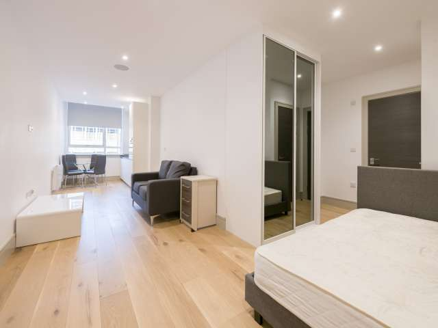 Studio apartment to rent in South Tottenham, London