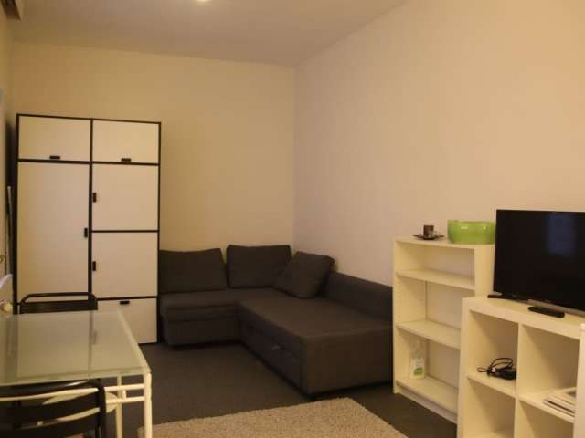 Studio apartment for rent in Brussels City Center