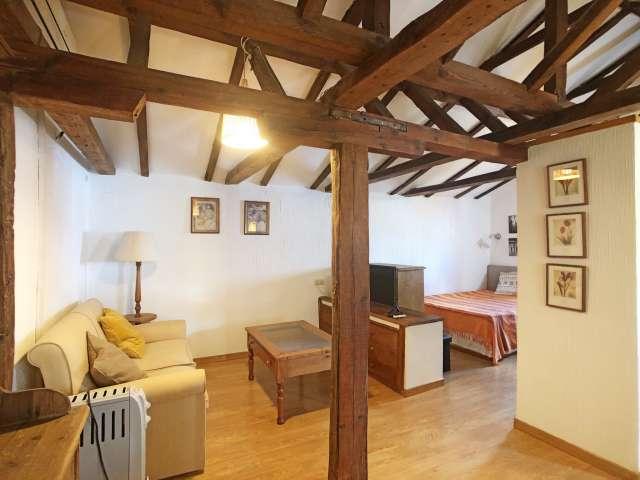 Rustic studio apartment for rent in Salamanca, Madrid
