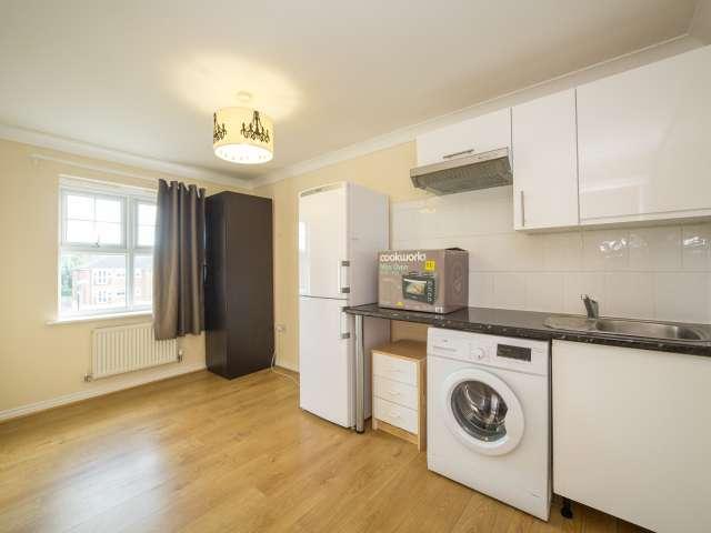 Minimal eingerichtete 1-Zimmer-Wohnung in Mill Hill zu vermieten