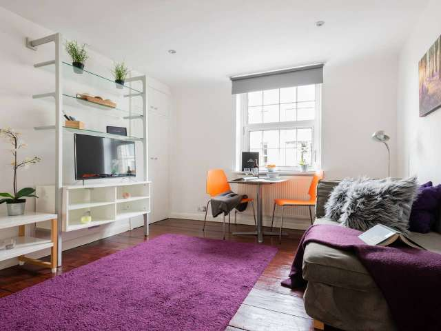 Sun-filled studio apartment to rent in Chelsea, London