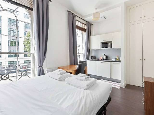 Central studio apartment to rent in Kings Cross, London
