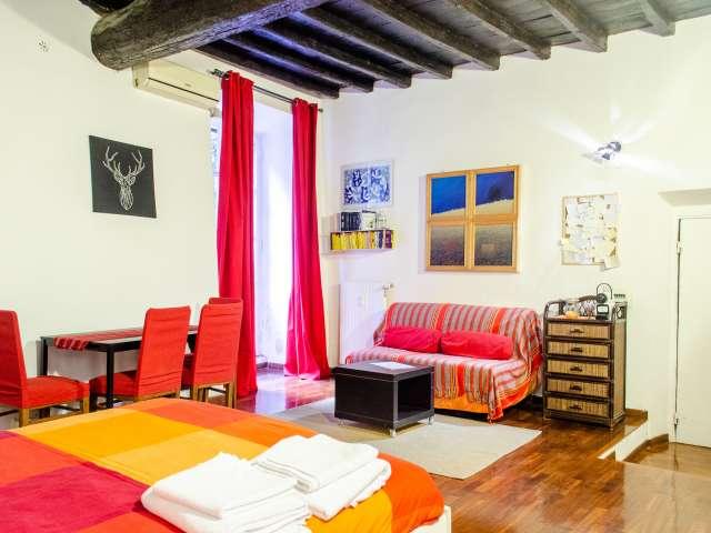 Monolocale stravagante in affitto, Centro Storico, Roma