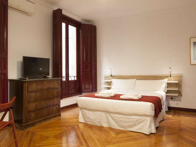 Cosy studio apartment for rent in the centre of Madrid