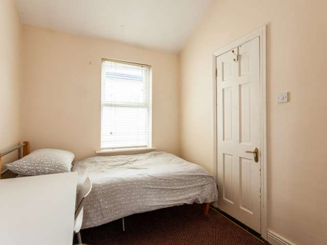 Nice room to rent, 12-bedroom house, Downtown, Dublin