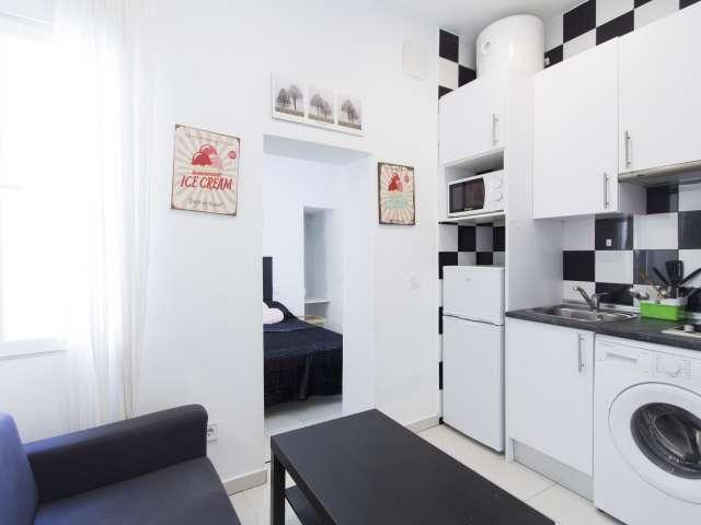 Chic studio apartment for rent in Usera Madrid