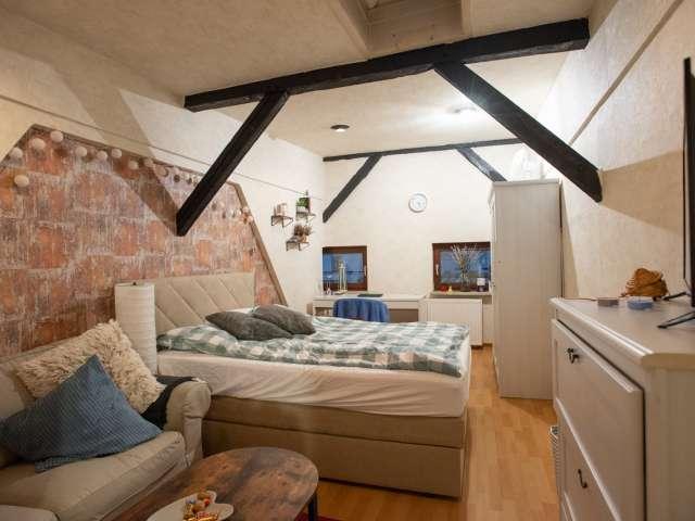 Möbliertes Zimmer zur Miete Wohnung mit 4 Schlafzimmern in Mitte