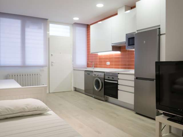 Stylish studio apartment for rent in Fuencarral, Madrid
