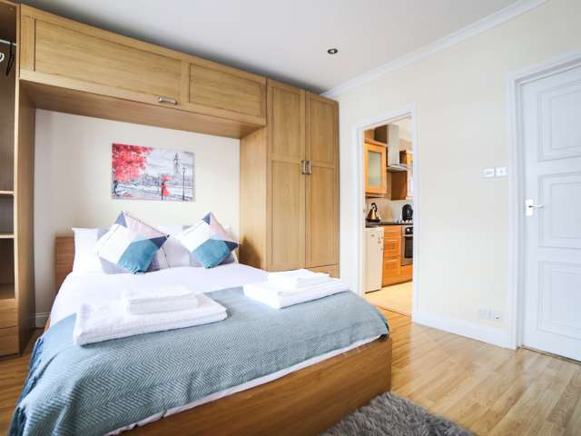 Stylish studio flat to rent in City of Westminster, London