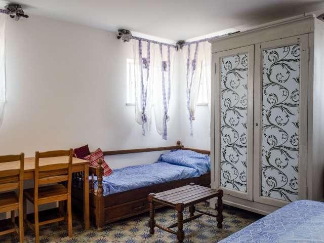 Monolocale con AC in affitto a Monteverde, Roma
