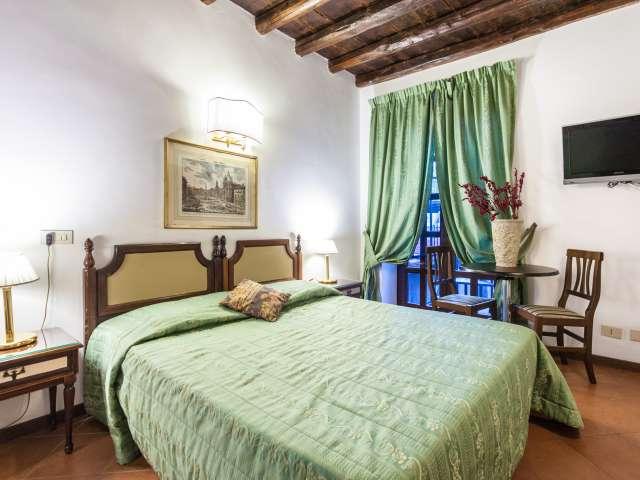 Romantico monolocale con AC in affitto nel centro di Roma