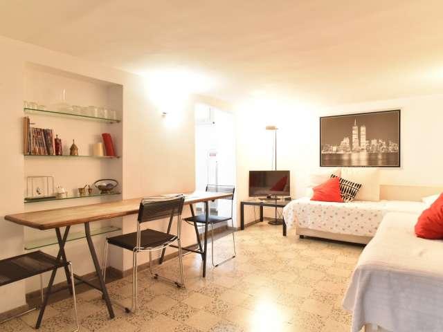 Immense studio à louer dans le centre-ville de Rome