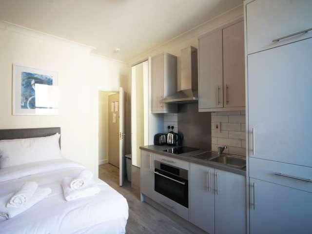 Appartamento monolocale servito in affitto nel centro della città, D2