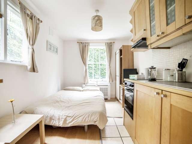 Cozy studio flat for rent in Pimlico, London