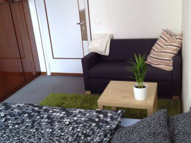 Spacious room in apartment in Stazione Centrale, Milan