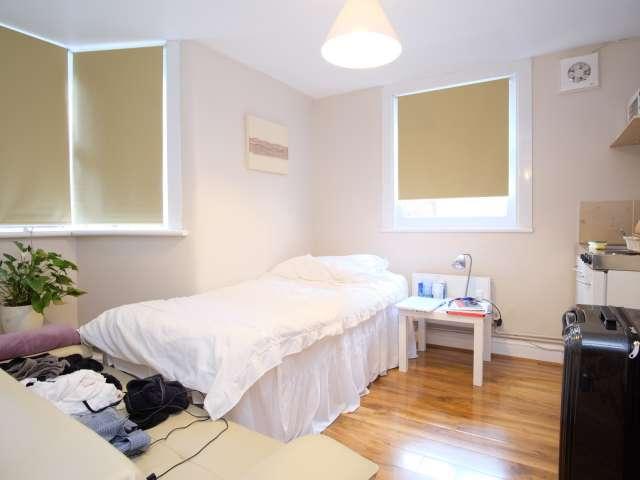Bright studio apartment for rent in Clapton, London