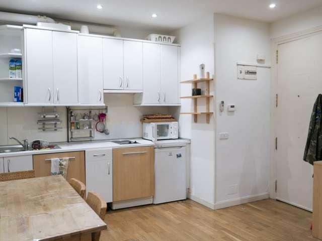 Möblierte 1-Zimmer-Wohnung zur Miete in Argüelles, Madrid