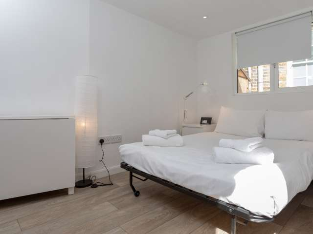 Studio flat to rent in Clapham, London