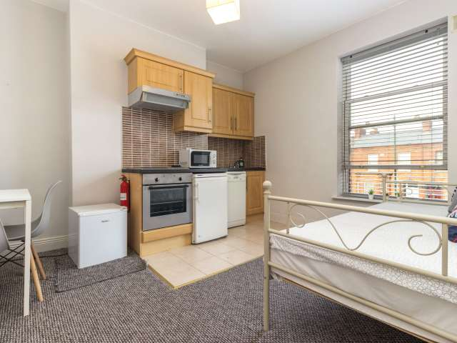 1-bedroom apartment for rent in Downtown, Dublin