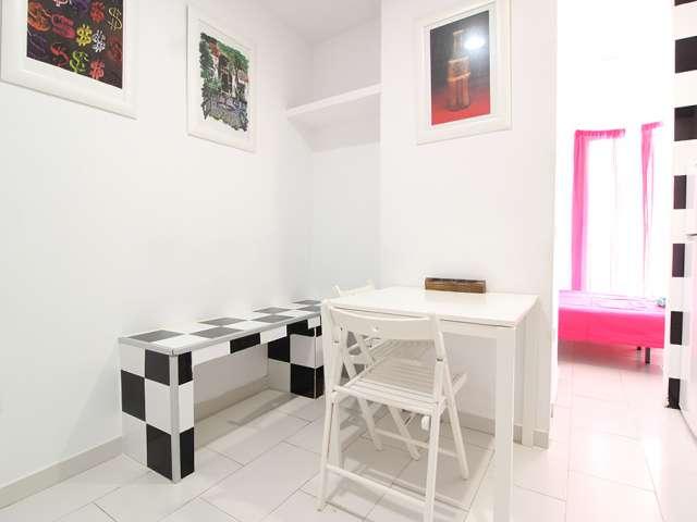 Lovely studio apartment for rent in Puerta del Ángel, Madrid