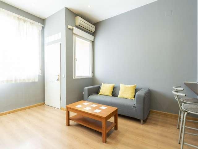 Studio apartment for rent in San Isidro, Madrid