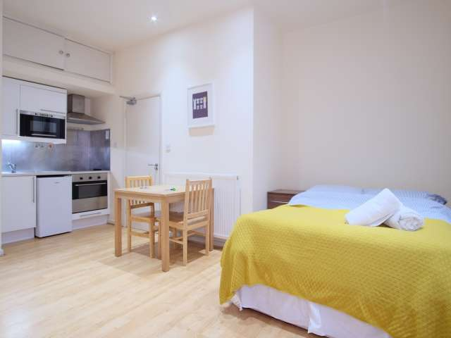 Studio apartment for rent in Brondesbury Park, London
