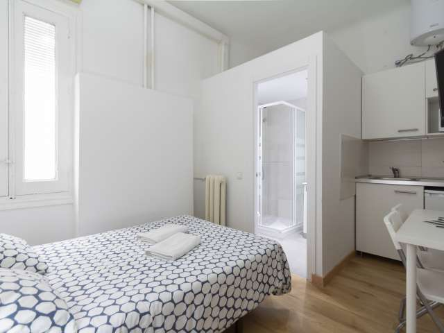Cozy studio apartment for rent in Moncloa, Madrid