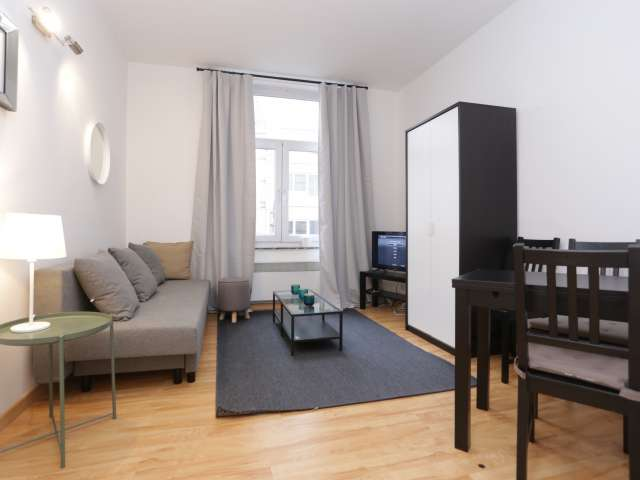 Charming studio apartment for rent in Saint Gilles, Brussels