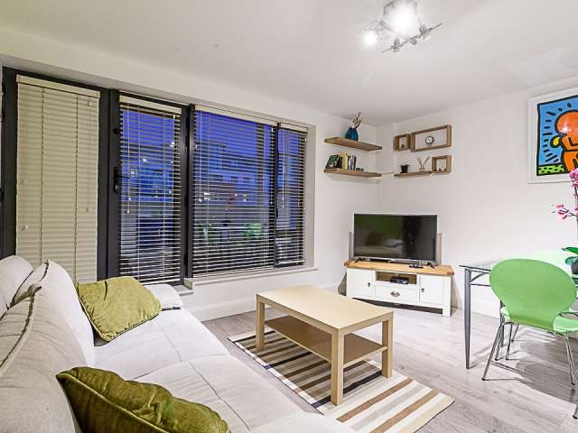 1-bedroom apartment for rent in Royal Canal Park