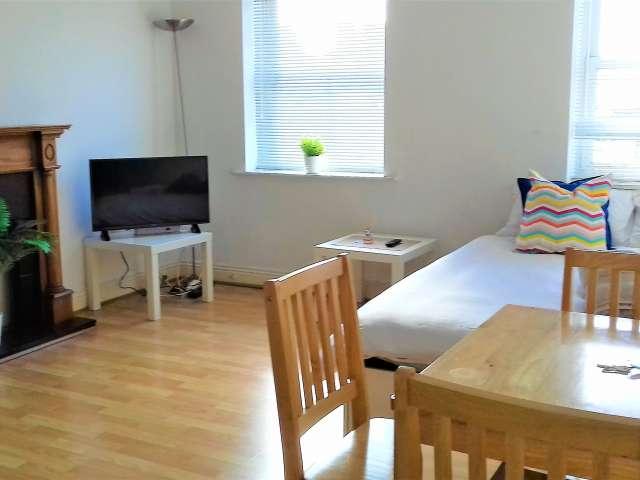 Apartamento entero de 1 dormitorio en Dublín 1