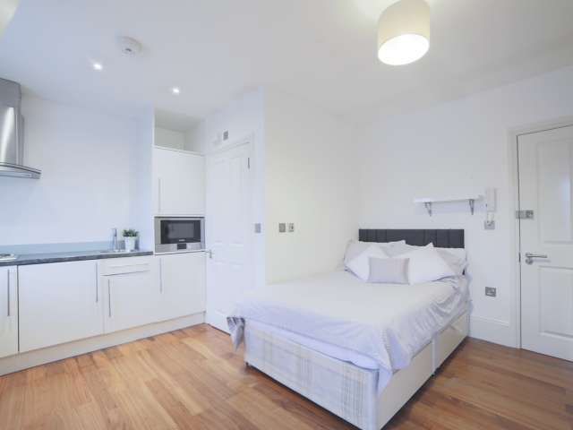 Studio flat to rent in City of Westminster, London