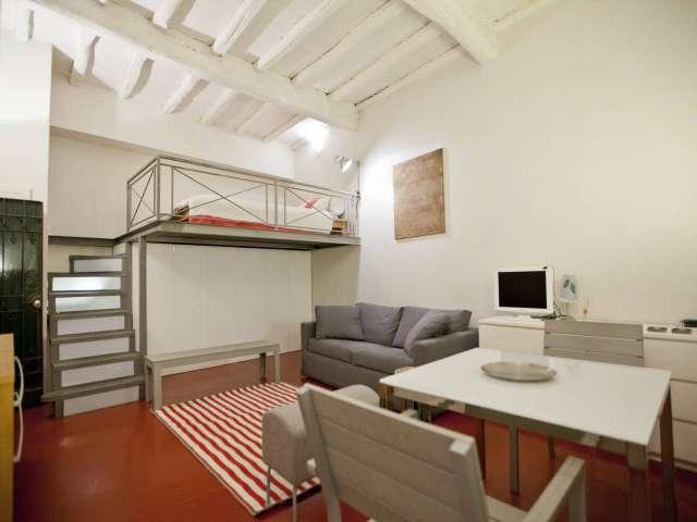 Spacieux studio à louer à Centro Storico, Rome
