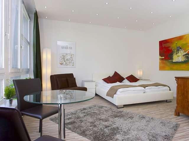 Studio-Wohnung zur Miete in Mitte, Berlin