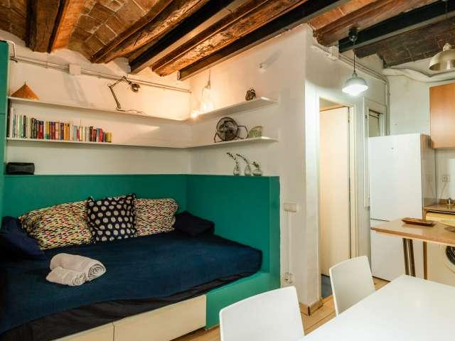 Funktionelle Studio-Wohnung zur Miete in El Raval, Barcelona