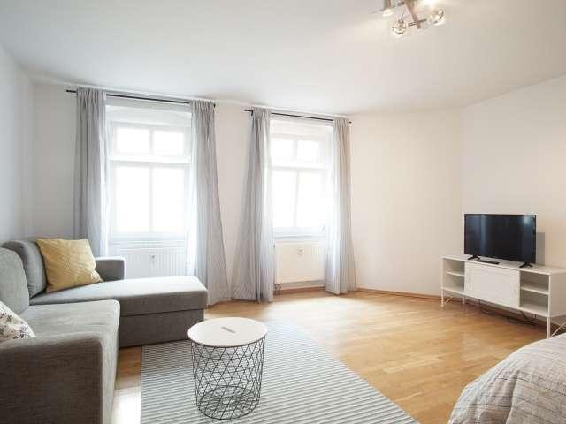Das geräumige Studio-Wohnung zur Miete in Mitte, Berlin