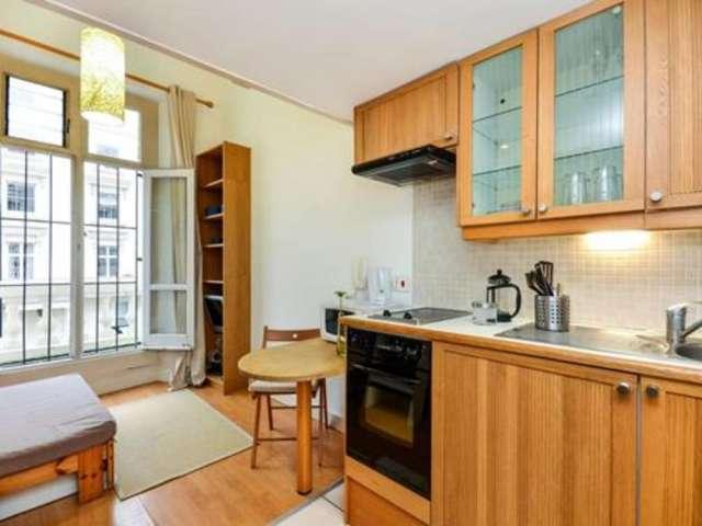Charming studio apartment for rent in Pimlico, London